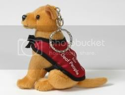 click to go to the Hearing Dogs for Deaf People shop!
